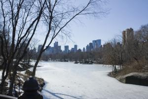 New York sous la neige, février 2010, licence CC (Marin Dacos)